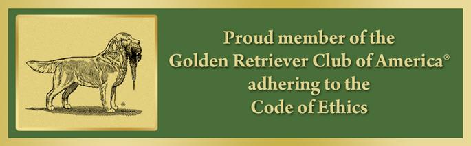 https://www.grca.org/wp-content/uploads/2015/08/logo-for-websiteStory-002.jpg